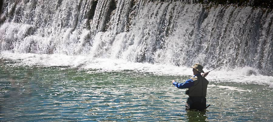 Things to do near blanco state park blanco riverside getaway for Blanco state park fishing